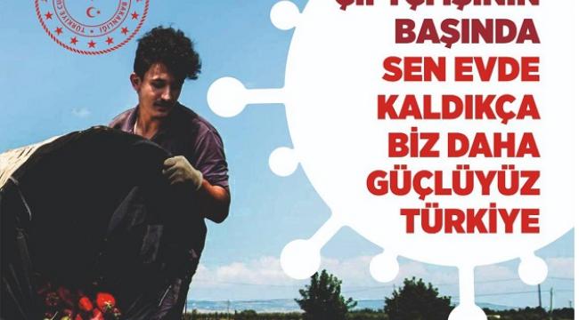 TÜRKOĞLU'NDA SEZONUN İLK ÜRÜNÜ YETİŞTİ..