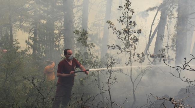 Kahramanmaraş'ta 9 ayda 72 orman yangını meydana geldi..