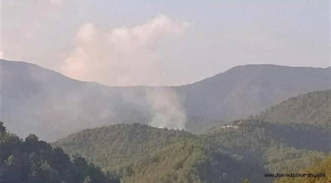 Kahramanmaraş'ta gece yarısı 2 ayrı noktada orman yangını
